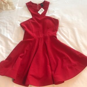 NWT Windsor party dress 💃🏻